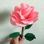 ペーパーフラワーバラの作り方|2色フラワーと材料購入店紹介