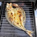 焦げた魚焼きグリルの掃除の仕方!手抜きでもきれいに保つ2つのコツ